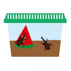 蚊取り線香 効果 煙2
