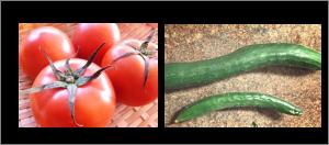 トマトときゅうり